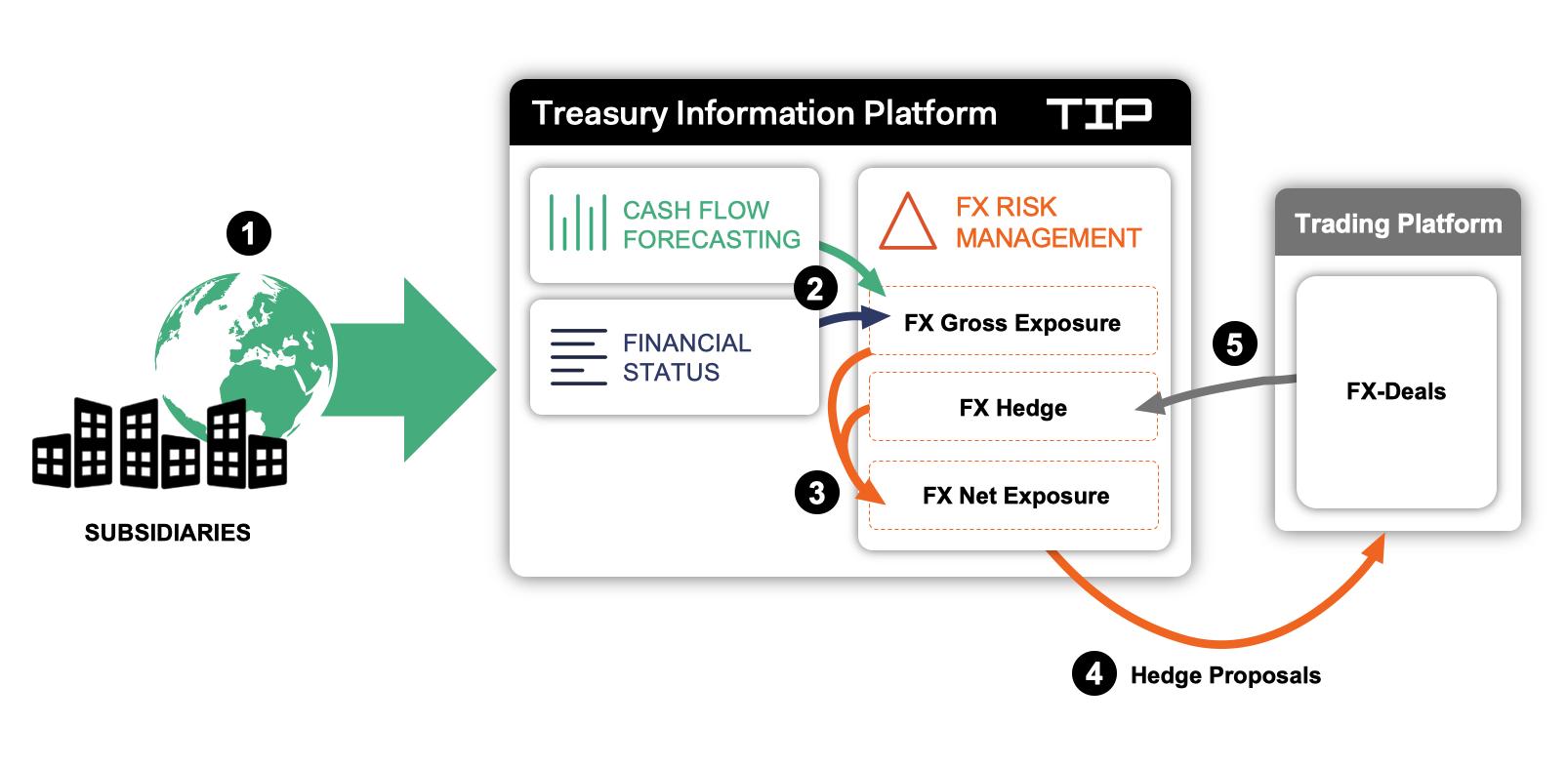 FX Risk Management with TIP
