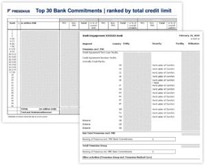 Kreditlinienüberwachung Bank Treasury